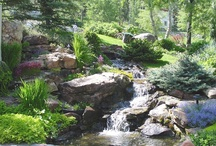 Water Features | Colorado Alpines & Wildflower Farm / Enjoy these unique water features designed and built by Colorado Alpines & Wildflower Farm. www.thewildflowerfarm.com