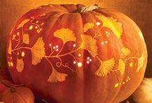 Halloween | Colorado Alpines & Wildflower Farm / We love to celebrate the harvest season at Wildflower Farm. www.thewildflowerfarm.com