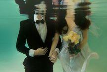 Under the sea / Underwater photography