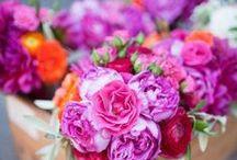 In Bloom / All things floral.