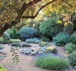 Mediterranean- Provence gardens