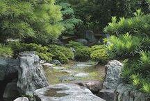 JAPANESE GARDEN / JARDIN JAPONAIS