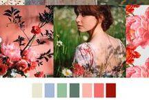 Pattern & Colors