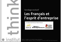 """Salon des entrepreneurs / Etude """"Les français et l'esprit d'entreprise"""", présentée par l'Institut Think, partenaire de Nabis Conseil, dans le cadre du salon des entrepreneurs 2013"""