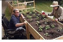 Accessible Gardens & Public Spaces