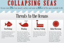 Ocean Conservation / by 🐋Free Cetaceans in Captivity They Need Your Voice!