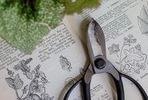 | Ikebana Scissors | / Make beautiful flower arrangements with your Ikebana Scissors. #Scissors are probably the single most important tools for creating flower arrangements.