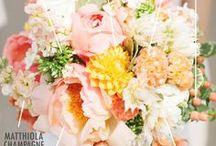 | Bouquet and arrangement breakdown | / Bouquet breakdowns and bouquet recipes.