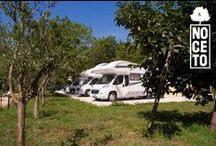 Il Noceto Area Sosta Camper / L'area sosta camper Il Noceto nasce nel Giugno 2013 per ospitare, nel nostro territorio, il turismo all'aria aperta. Per tutti gli amanti della natura, del verde, delle passeggiate e delle escursioni, all'interno dell' azienda agricola, è presente una comodissima area attrezzata con 5 piazzole.