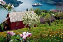 ▲ My life : Norway ▼ / by ☮ Anna BB ☮