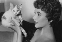Famous People + Cats