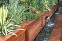 garden urbanfarming yard