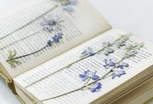 Crafts & Decor / by Irina Bodnar