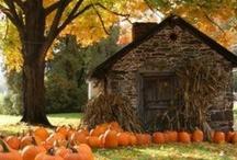 "Fall ""Colors"""