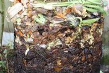 Composting / by Maegan Hunninghake