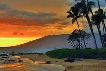 My Neighborhood / Maui, Hawaii / by Mardi Youngflesh