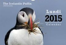 Calendars / Calendars with beautiful pictures from Iceland