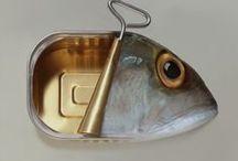 Petits poissons du Finistère
