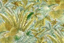 Tropics / Tropical Home