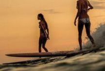 Surf Beauty / Beaches & Babes