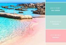 Summer Inspiration / Color palettes, DIYs and home decor inspired by the summer season!
