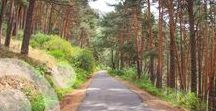 Monte Abantos / The southern slope of Abantos Mountain was protected in 1961 as Outstanding Landscape toguether with La Herreria Forest. Both are the natural surroundings of the Monastery of El Escorial, close to Madrid.
