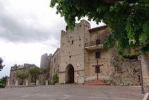 Vico nel Lazio  / Suggestivo borgo medievale, arroccato su uno sperone di roccia calcarea, a 721 m. slm., conserva ancora intatta, la sua cinta muraria medievale, con 25 torri di difesa e tre porte d'accesso. Dichiarato Monumento d'interesse Nazionale.