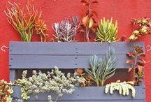 garden / modern ideas for outdoor spaces