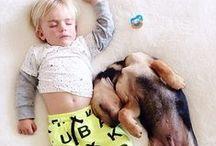Sleeping Positions / A look at how you sleep