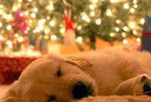 Christmas Time*