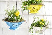 Hergebruik in de tuin / Creatief recyclen in de moestuin, van badkuip tot blikken.