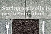 Moestuinquotes / Inspirerende quotes om je tuinkriebels te geven   Garden quotes