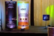 eSAX January 2015 / eSAX is an entrepreneur networking group for startups to create connections, gain knowledge from featured speakers and promote collaboration among regional Chambers of Commerce. eSAX events are held every 3 months to coincide with the provincially funded Ontario Self-Employment Benefit Program. The foundation of eSAX is built on three fundamental core values: Networking Knowledge Greater inter-Chamber cooperation