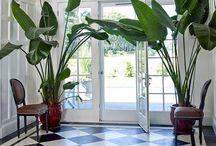 Modern Georgian Interiors / Modern Georgian Interiors