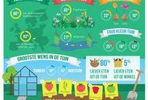 Infographics / Alle infographics op het gebied van moestuinieren, stadstuinieren, groenten, fruit en gezond eten.