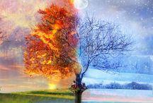 Astonishing Seasons