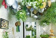 Gardening & Outdoors