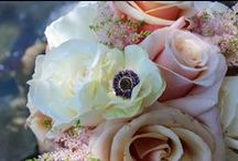 Bouquets / Florals for you BIG DAY!