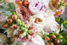 The Bouquet   Wedding / A combination of my own photos and others for wedding inspiration: wedding bouquet, floral arrangement, flowers, decorations