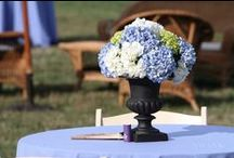 Flowers and Centerpieces / Our swanky collection of gorgeous wedding centerpieces and flower arrangements.