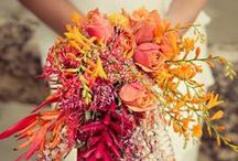 Bridal Bouquets / Elegant bridal bouquets and wedding flowers for the bride to be and her bridal party.