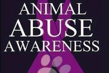 STOP ANIMAL ABUSE / ~~~~warning~~~~~ disturbing images!!!!! Stand up against animal cruelty / by Roxy Rose