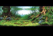Vivarium/paludarium/aquarium
