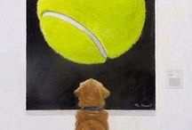 The art of the dog / Dog art, illustration and photography