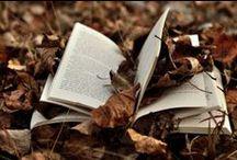 Four Seasons-Autumn