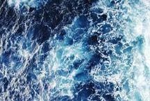 mares y océanos / · agua salada · neopreno · escamas · aire comprimido · aleta · burbuja · oleaje · arena · luz · membrana · roca · tentáculo ·