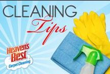 Cleaning and Organizational Tips / I am Larry Justice the owner of Heaven's Best in Port Stain Lucie FL. My customers tell me that they love the citrus smell from the cleaners and that their carpet smells so clean.  Something else that my customers like is that they don't get their socks wet, no more fans running all night. Also the stains are really gone for good. So give Heaven's Best a try and we won't let you down. Give us a call today.  772-464-7342