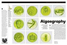 Publication inspiration / Great layouts and cover inspiration