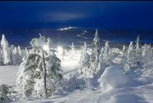 Winter and snow / by Mervi Kalin