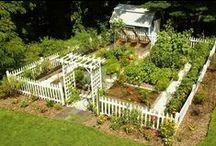herb garden ideas